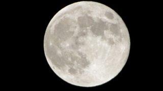 月見団子の時期の満月
