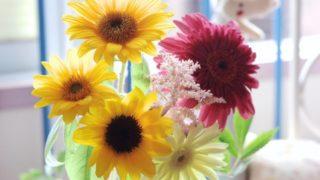 10月の花といえばガーベラ
