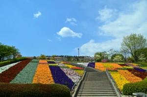 新日本三大夜景の笛吹川フルーツ公園