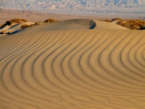 dunes-718912_640