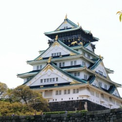 真田幸村が活躍した大坂城