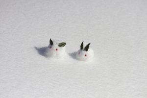 寒中見舞いの頃に降る雪で作ったうさぎ