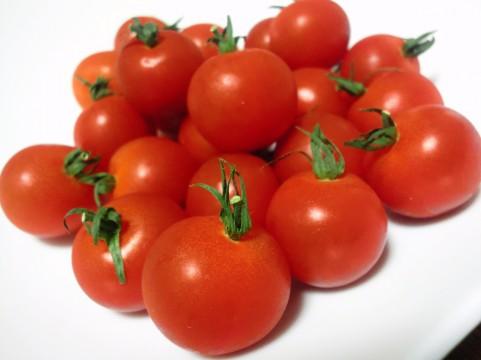 夏野菜の代表格のトマト