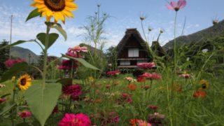日本三大秘境の白川郷