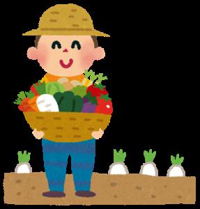 二百二十日の頃に野菜を収穫する農家