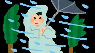 二百二十日の頃の台風