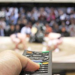 大相撲をテレビで観戦する