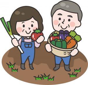 野菜を収穫する農家のイラスト