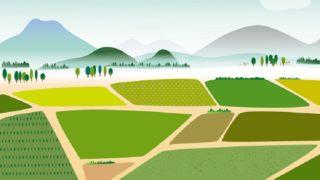 畑の風景のイラスト