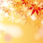 秋の紅葉のイラスト