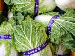 売られている白菜