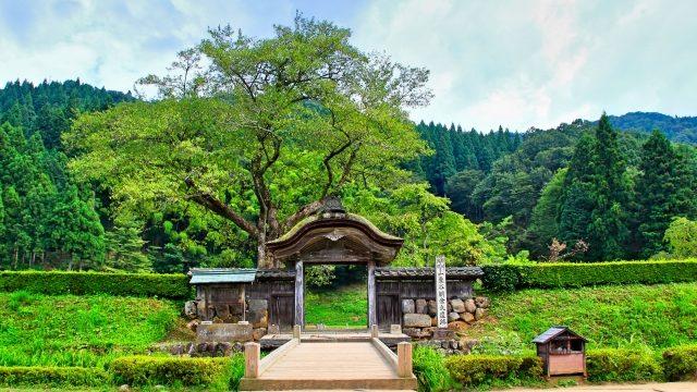 越前国一乗谷の朝倉氏居館跡