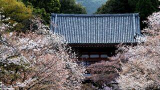 醍醐寺の山門